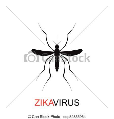 Mosquito clipart zika Virus white mosquito isolated of