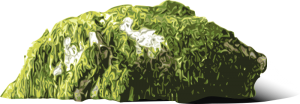Moss clipart Bewachsener Art Download Clip Fels