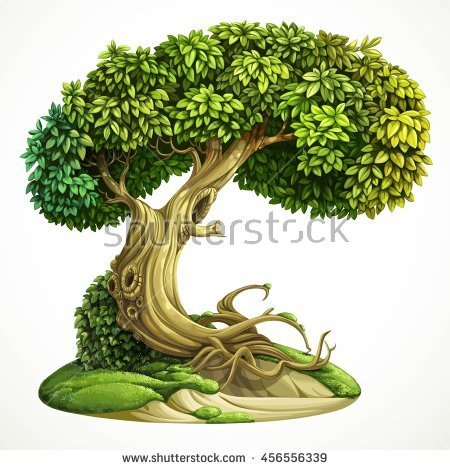 Moss clipart long grass Old  hill deciduous on