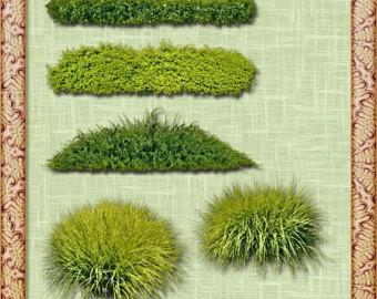 Grass Clip Grass PNG Clipart