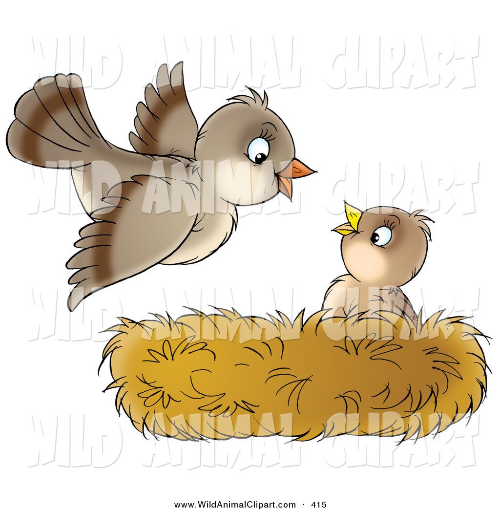 Nest clipart mother bird #1