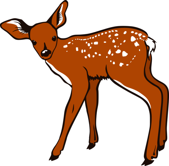 Buck clipart transparent Art Cliparting clipart Free images