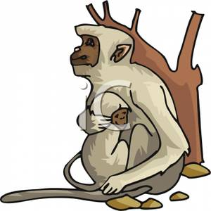 Mother And Baby clipart monkey Holding In Mother Her Baby