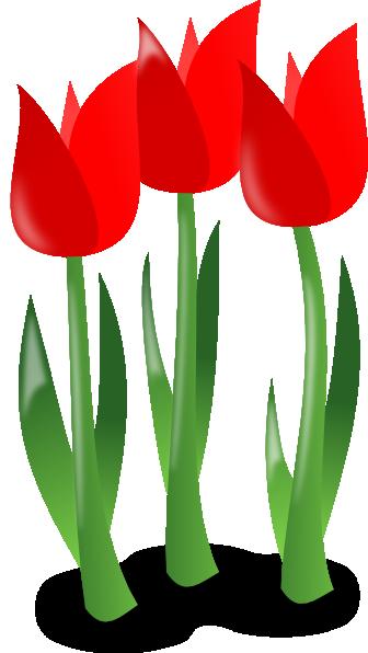 Tulip clipart may #3