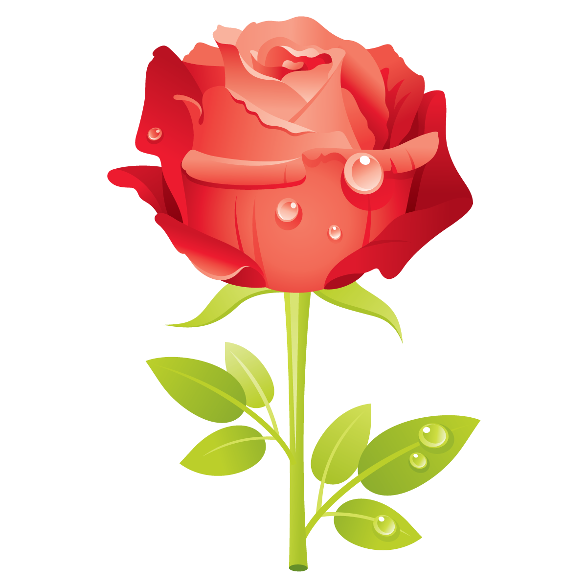 Rose clipart mothersday #8
