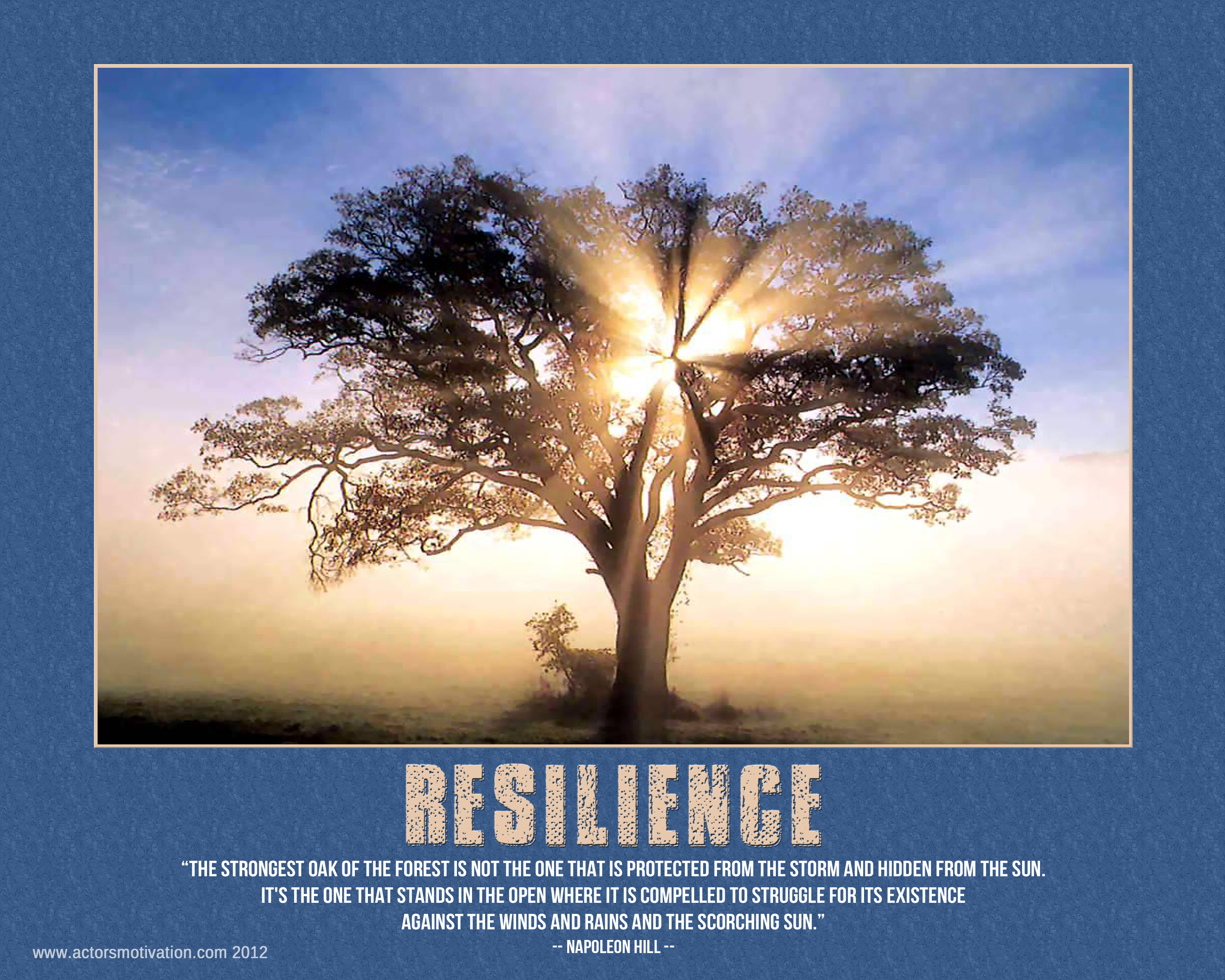 Resilience Fancy  With Quotes