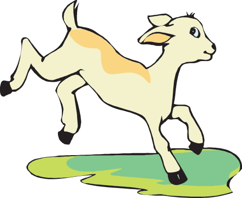 Mountain Goat clipart baby goat #11
