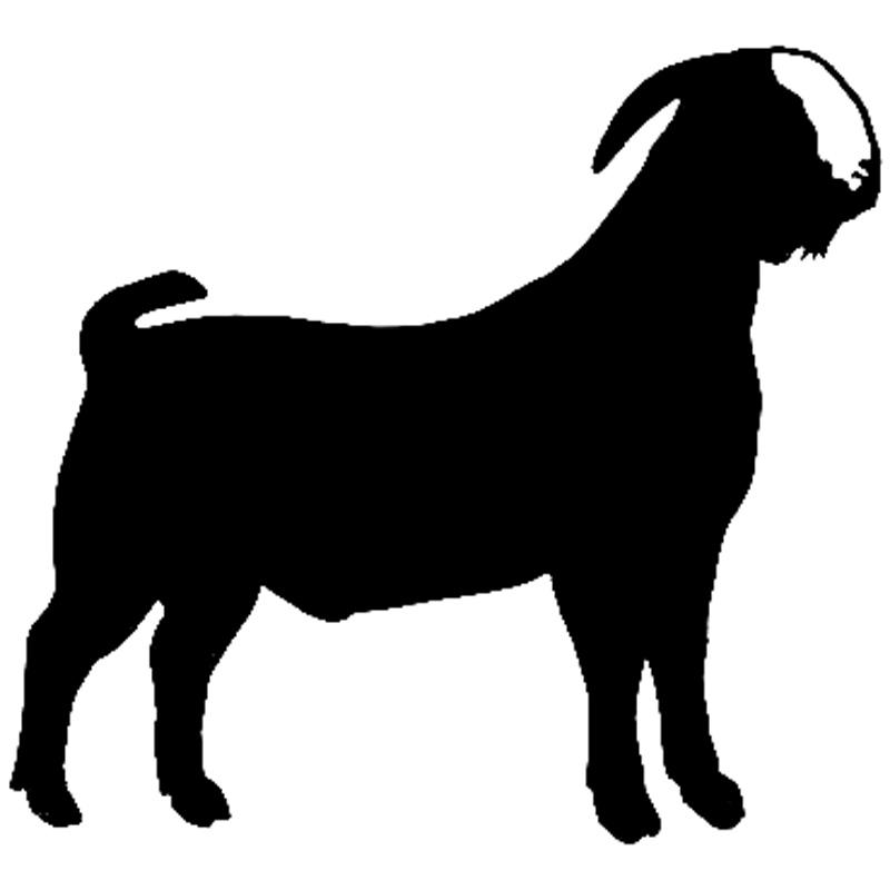 Mountain Goat clipart chiva #8