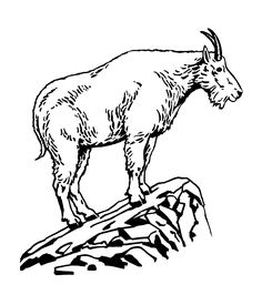 Mountain Goat clipart printable Clip or Download Art animal