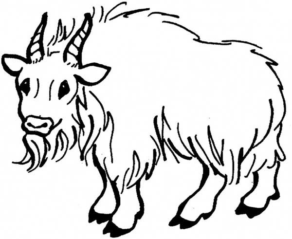 Mountain Goat clipart printable Mountain Pages Goat Coloring Coloring