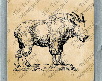 Mountain Goat clipart printable Goat burlap for Digital Download