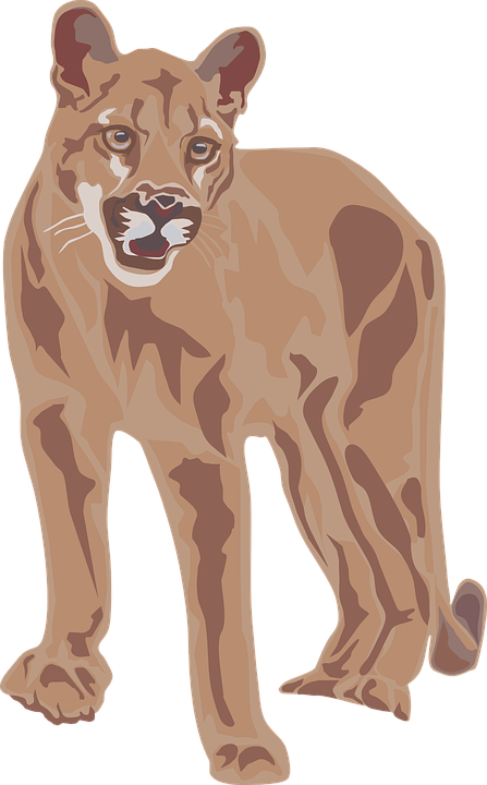 Mountain Lion clipart Svg Download drawings Mountain Download