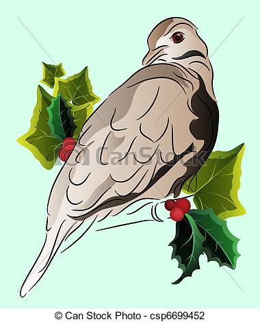 Mourning Dove clipart line drawing Dove and of holly ivy