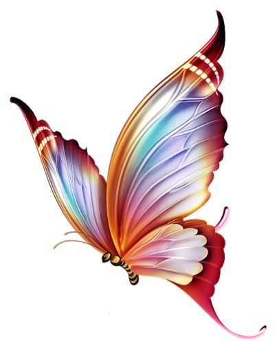 Blue Rose clipart colorful flying butterfly Butterfly  ideas tattoos Best