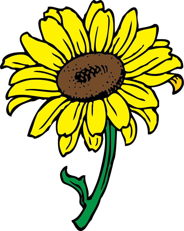 Yellow Flower clipart yellow color Bouquet  outline clipart free