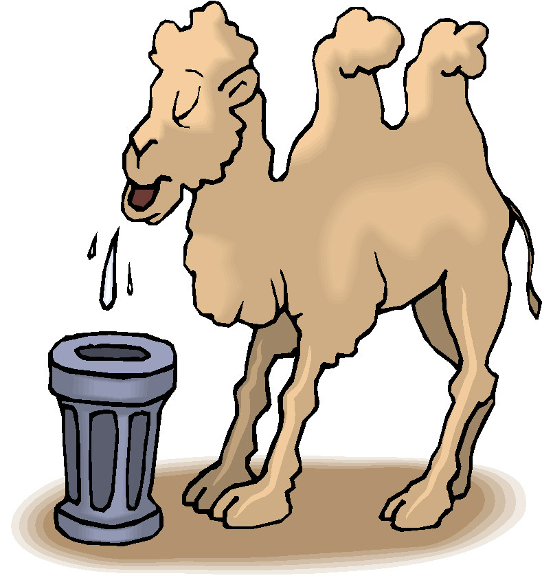 Moving clipart animal Free Camel Alphabets Clip and