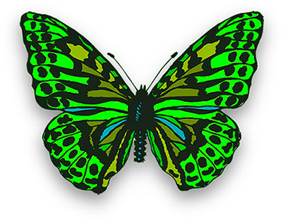 Bright clipart animated Butterfly butterfly in Clipart bright