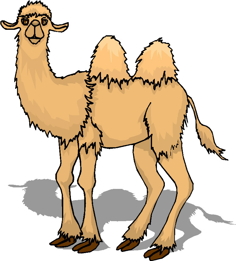 Moving clipart camel Graphics animal Camel Gifs Animated