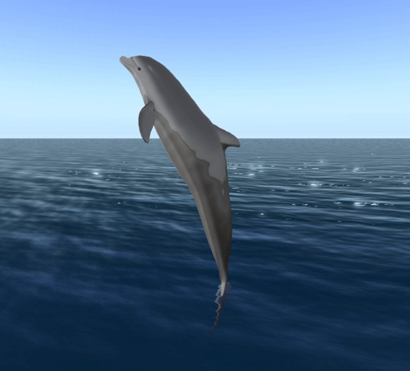 Moving clipart dolphin Second Dolphin Life Offsim Marketplace