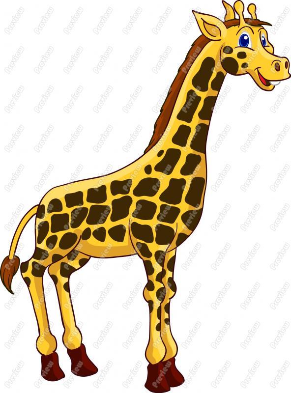 Realistic clipart giraffe #5