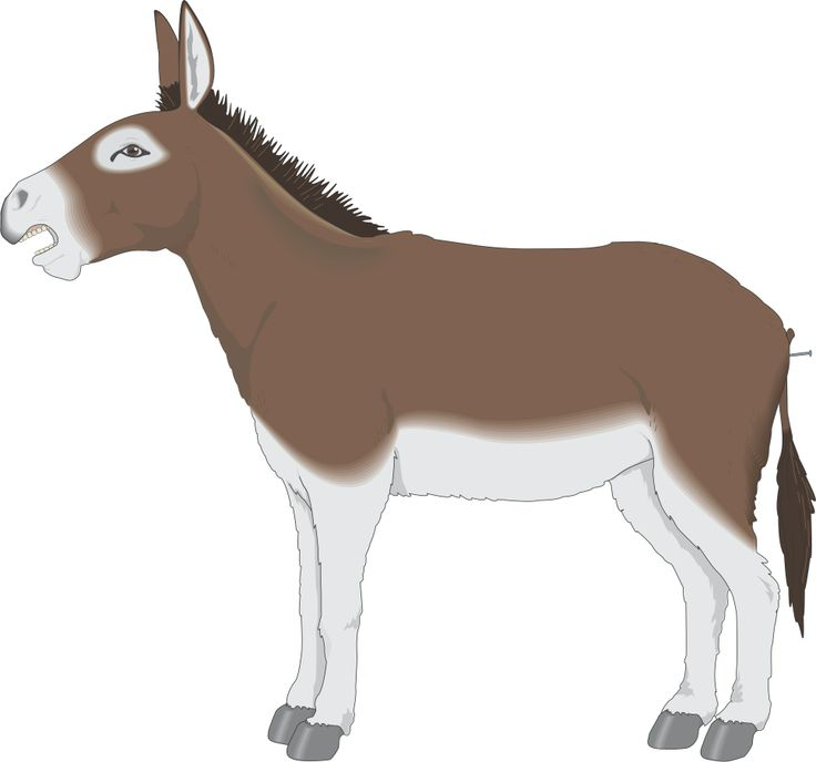 Moving clipart mule #6
