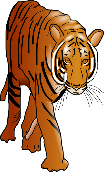 Moving clipart tiger #9