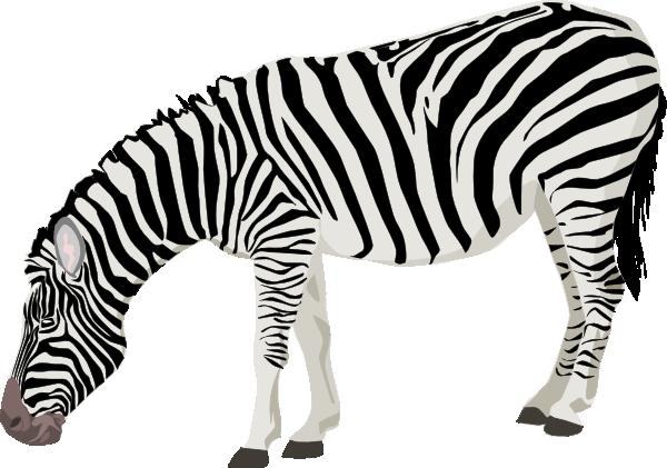 Moving clipart zebra #7