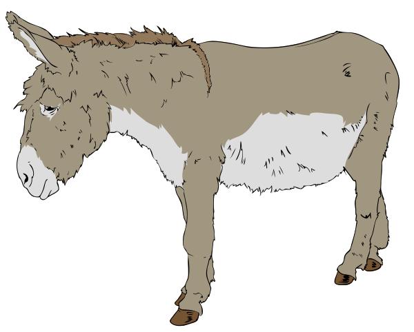 Mule clipart Clipart  Mule Picture Free