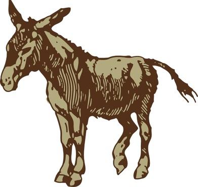 Mule clipart face Vector vector) Mule (51 download