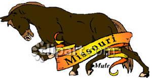 Missouri Animal Mule of Free