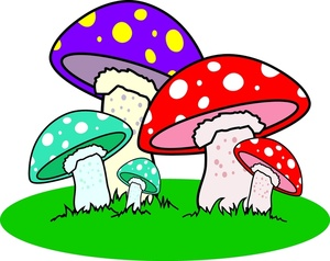 Triipy clipart colorful Spotted mushrooms  Image Mushrooms