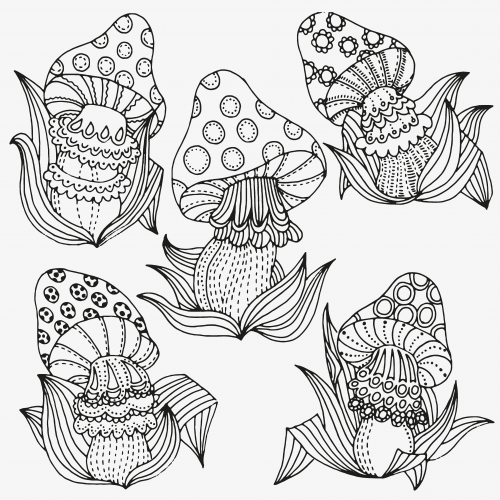 Mushroom clipart coloring book Coloring kids likes is mushroom