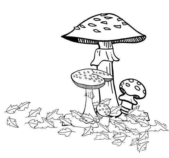 Mushroom clipart coloring book This Pin on best Colouring