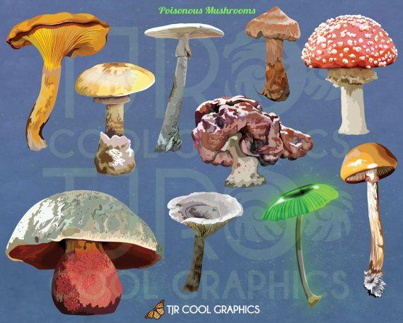Mushroom clipart coloring book Pinterest Mushrooms Digital Art 28