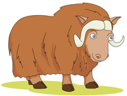 Ox clipart Results Mammal Clipart Pictures Results