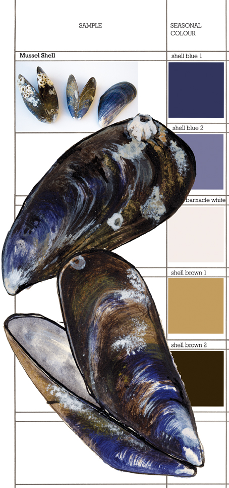 Mussel clipart business strength #2