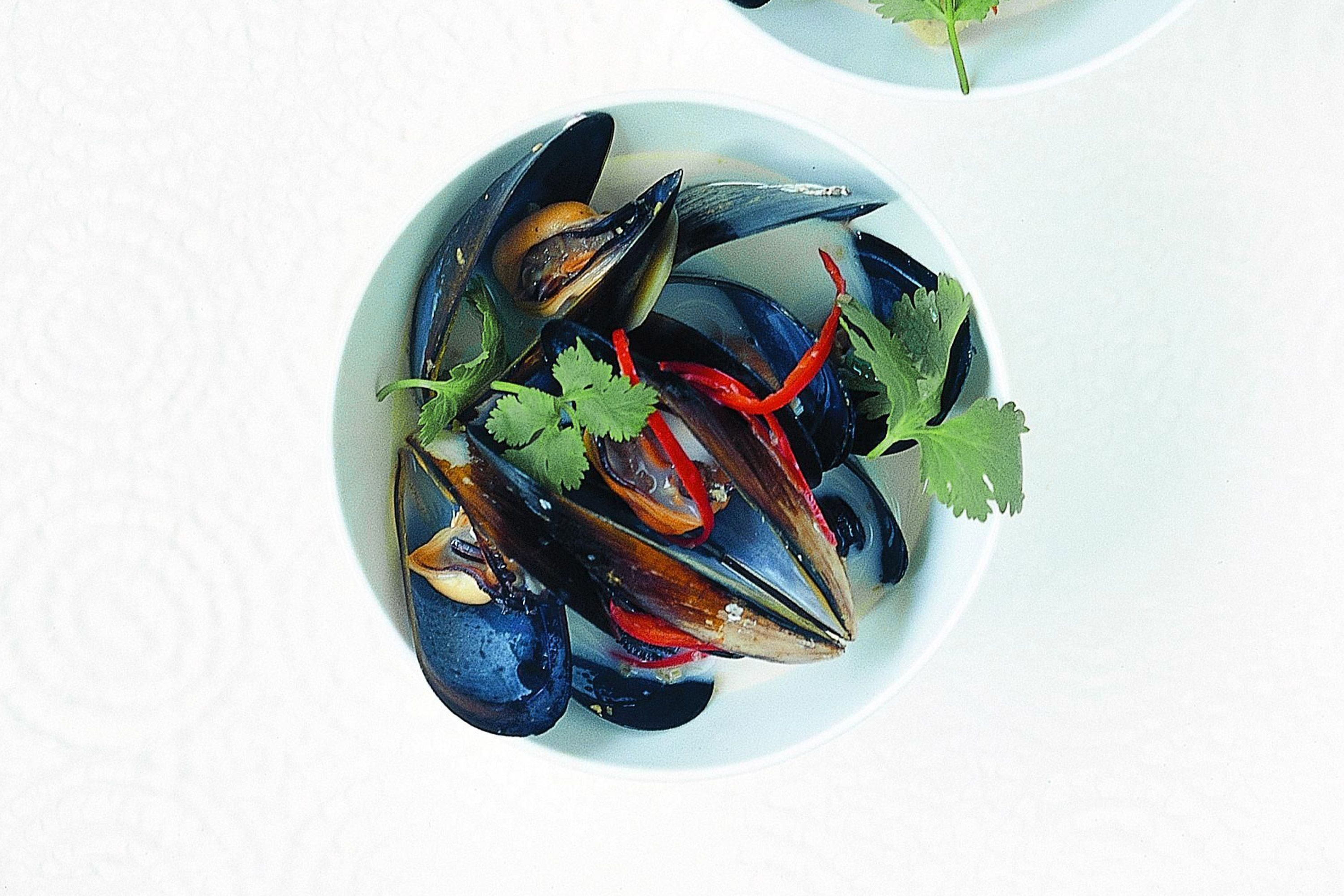 Mussel clipart capable Coconut chilli Lemongrass  mussels