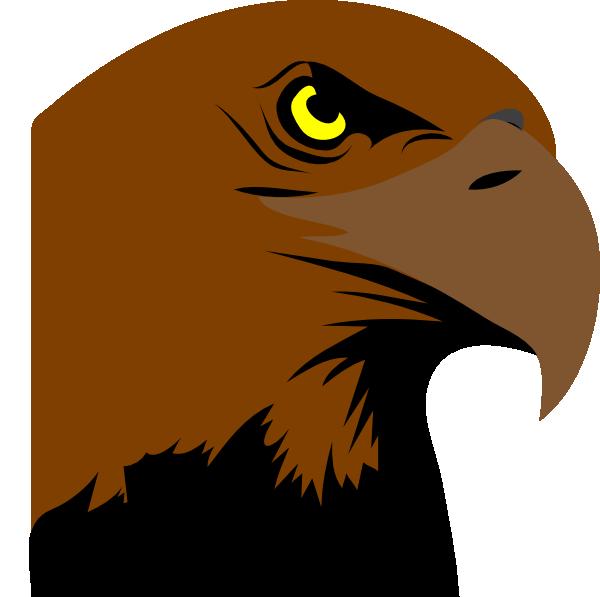 Beak clipart vertebrate Hawk hawk Animated Animated photo#9