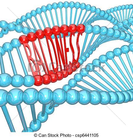 Mutant clipart heredity Hereditary in Strand  Baldness