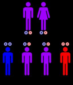 Mutant clipart heredity Mutation Occur hereditary Hood Mt