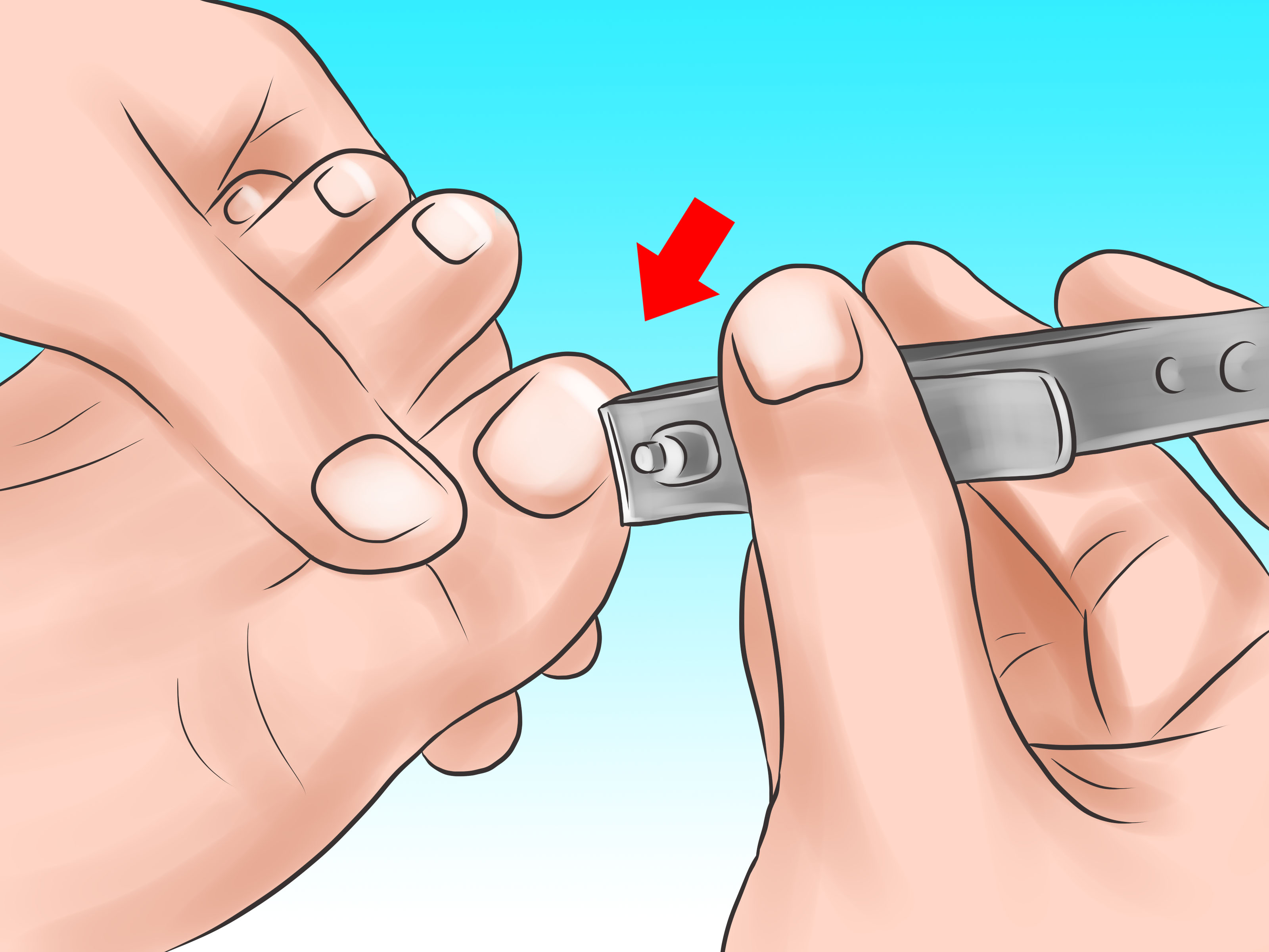 Nail clipart clean WikiHow and how Nails Hand