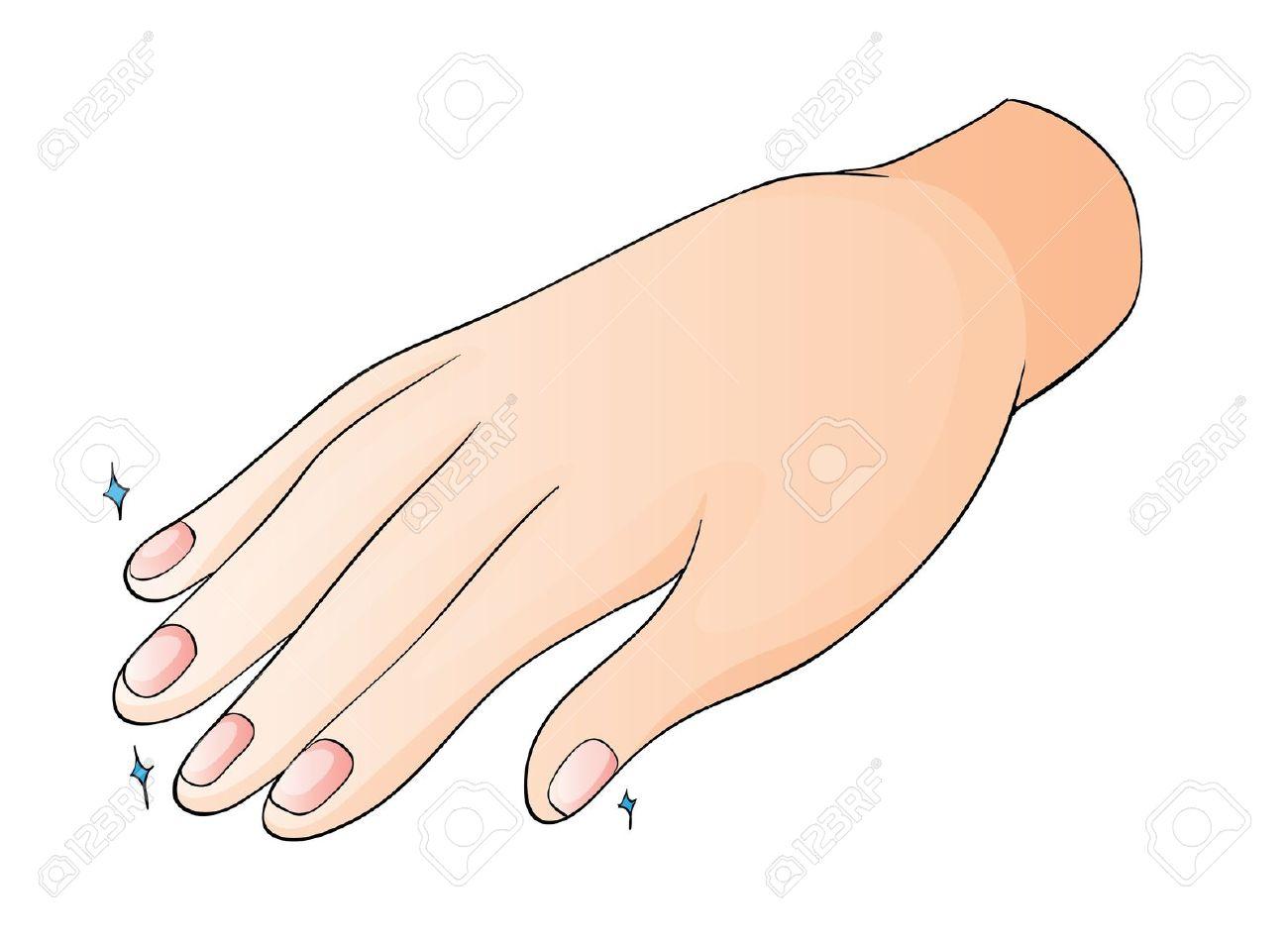 Nail clipart fingernail Fingernails Clipart Clipart