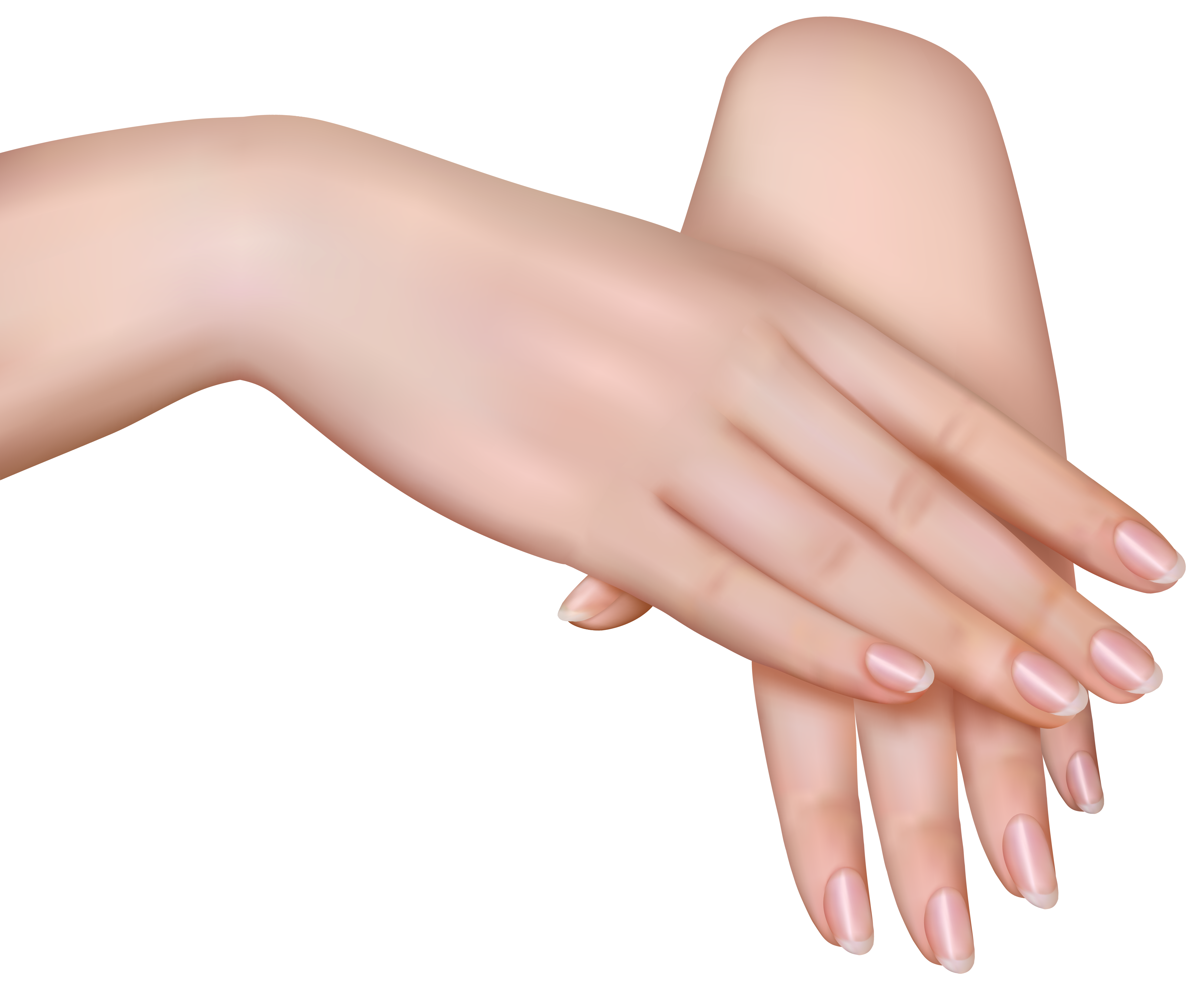 Nail clipart woman hand  size Hands View High