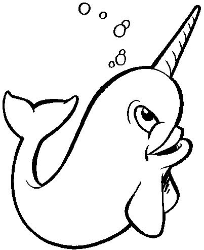 Narwhal clipart Images Art Clipart Clipart Narwhal