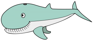 Narwhal clipart transparent Narwhal narwhal com Large art