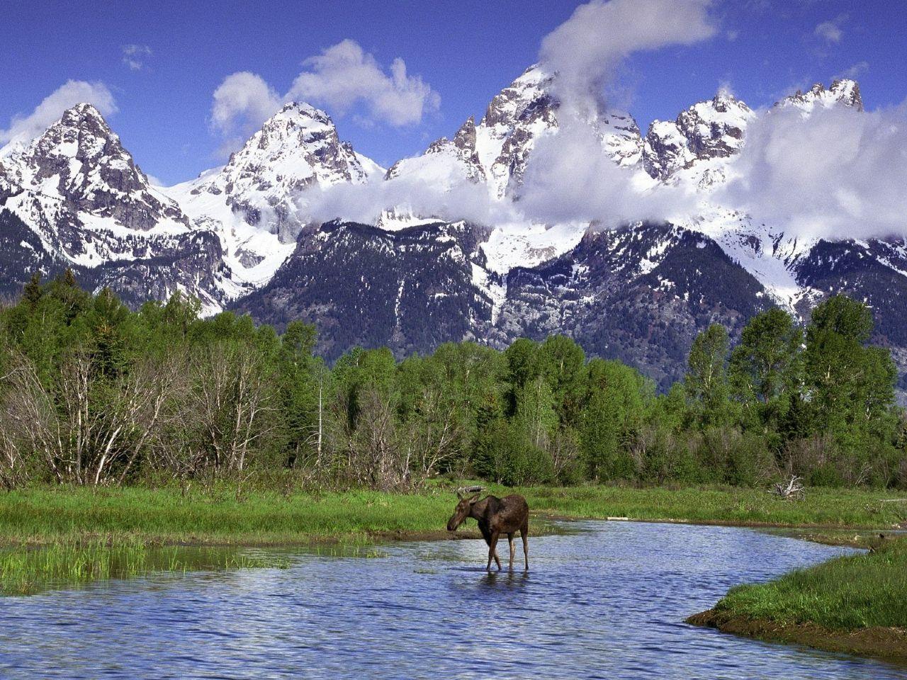 National Park clipart nature park National clipart Teton #4 Download