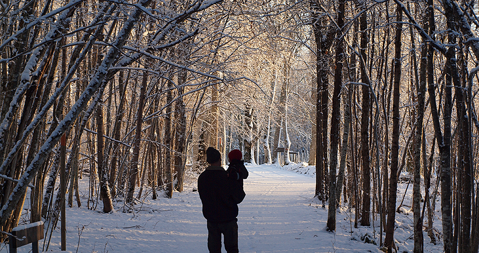 National Park clipart winter forest Park National Choose and Clothing