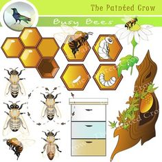 Science clipart bee #13