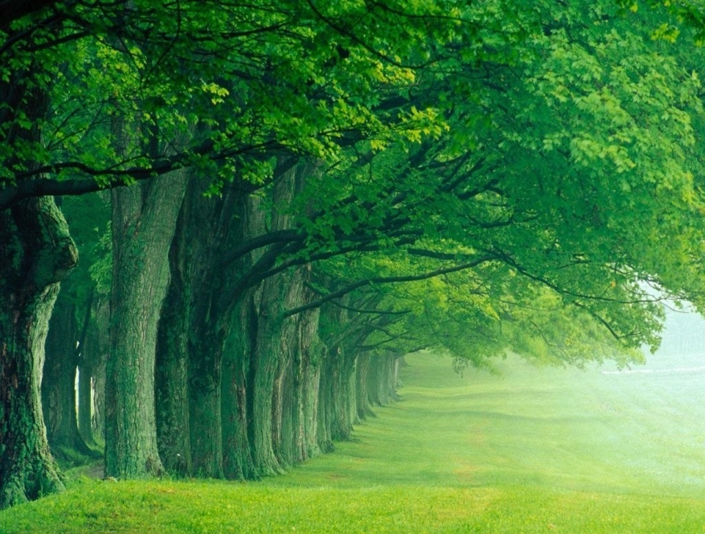 Nature clipart hd quality Nature Hd Pc Hd Pc