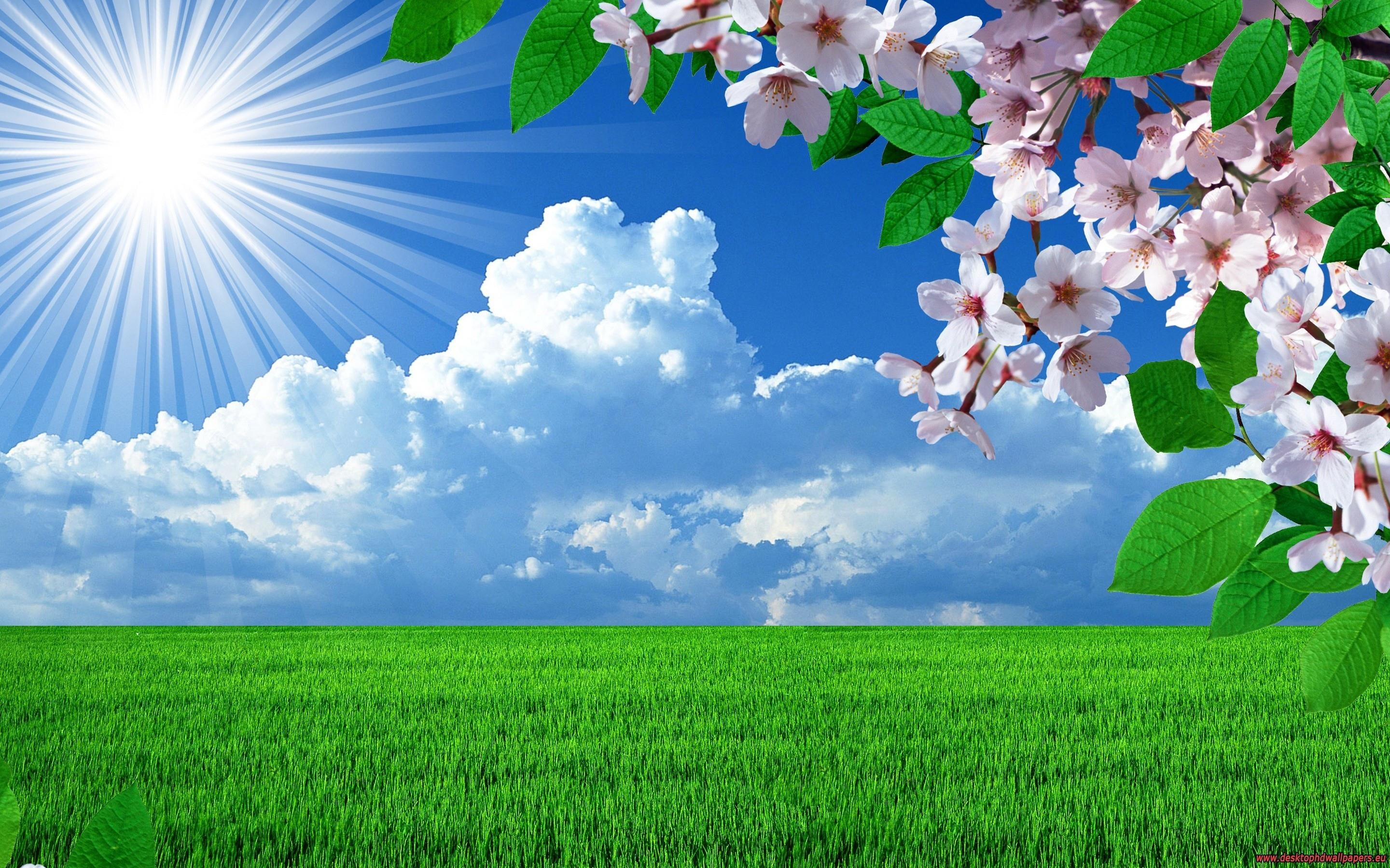 Nature clipart hd quality Natural Cliparts clipart Zone Hd